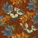 与鸟的无缝的花卉背景 库存图片