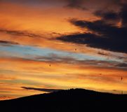 与鸟的日落在LitomÄ› Å™ice 库存图片