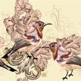 与鸟的美好的无缝的传染媒介墙纸样式 库存图片
