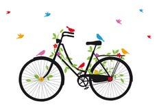 与鸟的老自行车,向量 免版税库存图片