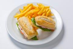 与鸡、乳酪和金黄炸薯条土豆的三明治 图库摄影