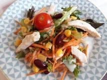 与鸡、玉米和豆沙的自然菜沙拉 库存图片