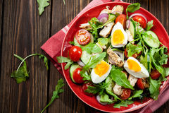 与鸡、蕃茄、鸡蛋和芝麻菜的新鲜的沙拉在板材 库存照片