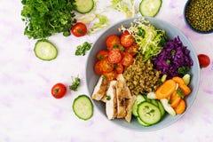 与鸡、蕃茄、黄瓜、莴苣、红萝卜、芹菜、红叶卷心菜和绿豆的健康沙拉在轻的背景 免版税图库摄影
