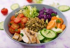 与鸡、蕃茄、黄瓜、莴苣、红萝卜、芹菜、红叶卷心菜和绿豆的健康沙拉在轻的背景 库存照片