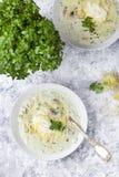 与鸡、蘑菇、奶油和乳酪的烤宽面条汤 库存图片
