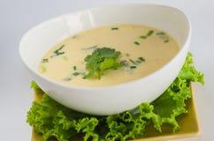 与鸡、galanga根和椰子的汤 免版税库存照片