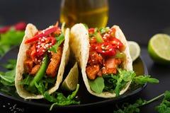 与鸡内圆角的墨西哥炸玉米饼在西红柿酱和辣调味汁 库存图片