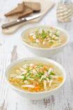 与鸡和荷兰芹的蔬菜汤 库存图片