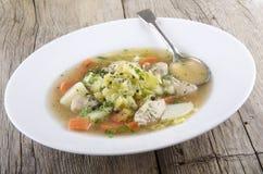 与鸡和菜的爱尔兰人的菜肴 免版税库存照片