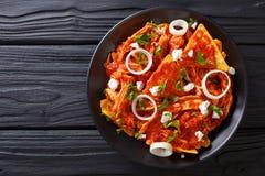 与鸡和蕃茄辣调味汁特写镜头的自创chilaquiles Hori 库存图片