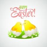 与鸡和鸡蛋的复活节看板卡 向量 免版税库存图片