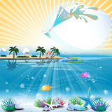 与鸡尾酒和正文的热带海题材背景 免版税库存照片