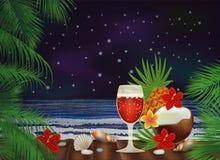 与鸡尾酒的夜热带背景 免版税库存图片