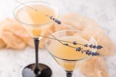 与鸡尾酒马蒂尼鸡尾酒的两块玻璃 免版税库存图片