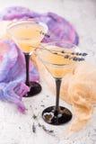 与鸡尾酒马蒂尼鸡尾酒的两块玻璃 免版税库存照片