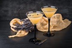 与鸡尾酒马蒂尼鸡尾酒的两块玻璃 免版税图库摄影