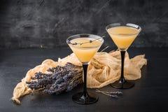 与鸡尾酒马蒂尼鸡尾酒的两块玻璃 库存图片