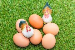 与鸡的鸡蛋在绿色玻璃 库存图片
