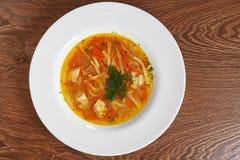 与鸡,面团,切的红萝卜,葱的汤,装饰用莳萝 库存照片