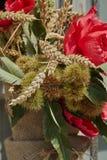 与鸦片、耳朵和栗子猬的花束 免版税库存照片