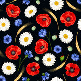 与鸦片、雏菊和矢车菊的无缝的样式 也corel凹道例证向量 免版税图库摄影