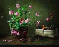 与鸦片、黑莓和蝴蝶的静物画 免版税库存照片