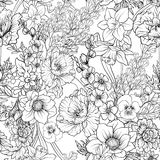 与鸦片的无缝的样式开花黄水仙,银莲花属,紫罗兰色  免版税库存照片