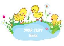 与鸭子、池塘和花的横幅-幼儿园的 免版税库存照片