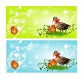 与鸭子的复活节横幅 免版税库存照片