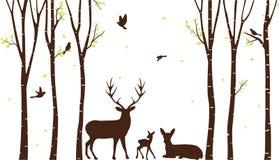 与鹿的桦树和鸟现出轮廓背景 免版税库存图片