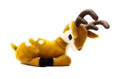 与鹿角的鹿 免版税库存图片