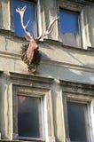 与鹿头和垫铁的老房子门面 图库摄影