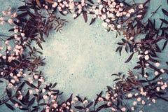 与麦和叶子许多花的花卉框架构成在蓝色背景 免版税库存照片