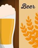 与麦子叶子海报的大啤酒杯泡沫 库存图片