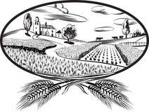 与麦子的耳朵的长圆形 库存图片