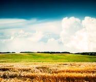 与麦田和云彩的夏天横向 免版税图库摄影