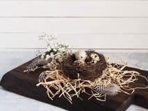 与麦花的五颜六色的复活节装饰鹌鹑蛋和在巢的鸟羽毛 免版税库存图片