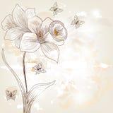 与黄水仙花的明信片 皇族释放例证