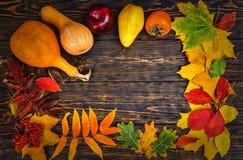与黄色叶子、红色苹果和南瓜, h的秋天背景 库存图片