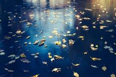 与黄色叶子的冻结的湖表面 图库摄影