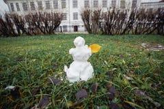 与黄色叶子的雪人草 滑稽的广角图片 库存照片
