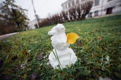 与黄色叶子的雪人草 滑稽的广角图片 库存图片