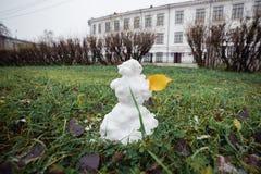 与黄色叶子的雪人草 滑稽的广角图片 免版税库存照片