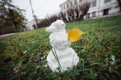 与黄色叶子的雪人草 滑稽的广角图片 免版税库存图片