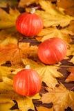 与黄色叶子,在一个木织地不很细背景的橙色南瓜的秋天垂直的横幅 秋天背景 免版税库存照片