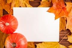 与黄色叶子,在一个木织地不很细背景的橙色南瓜的秋天水平的横幅 库存图片