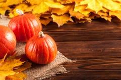 与黄色叶子,在麻袋布片断的橙色南瓜的秋天水平的横幅在一个木织地不很细背景的 库存图片