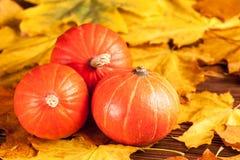 与黄色叶子,在麻袋布片断的橙色南瓜的秋天水平的横幅在一个木织地不很细背景的 库存照片