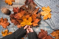 与黄色和红槭叶子的工作区 免版税库存照片